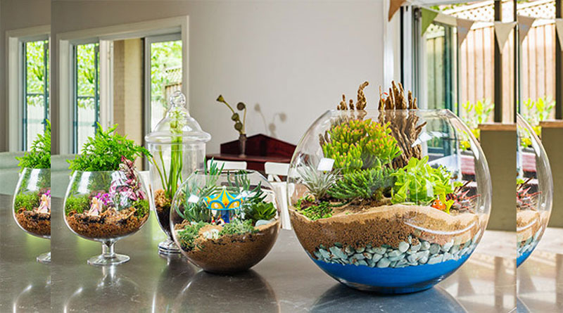 make-terrarium-5