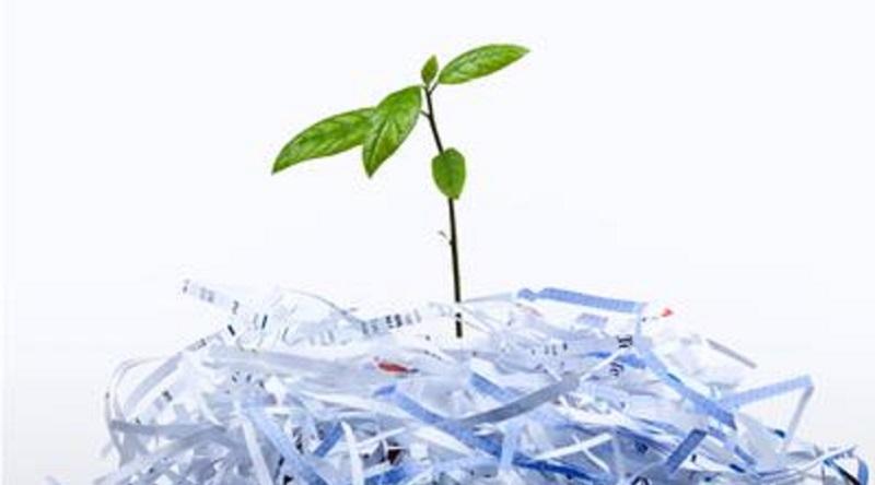 کسب و کار سبز و اقتصادی بازیافت کاغذ باطله