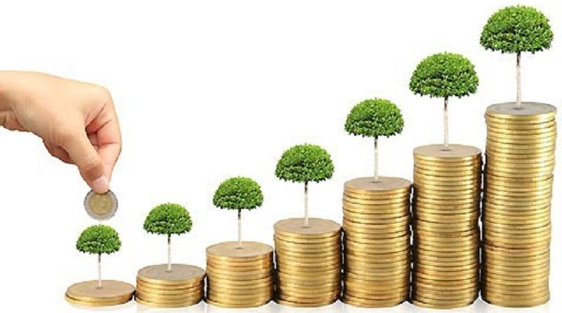 از این ۵ مدل سرمایهگذار اجتناب کنید !