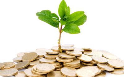 معرفی ایدههای کسب و کار از طریق کشاورزی برای کارآفرینان جوان