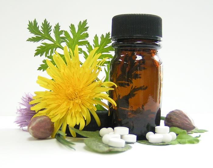 گیاه پزشکی و مهارتهای لازم برای کسب درآمد