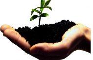 پنج گزینه برای کارآفرینی با کمترین سرمایه اولیه