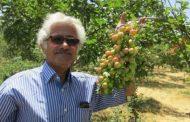 باغ هفتاد و دو محصول در همدان
