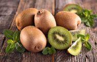سرمایه گذاری با طعم کیوی، میوه ای برای تمام فصول