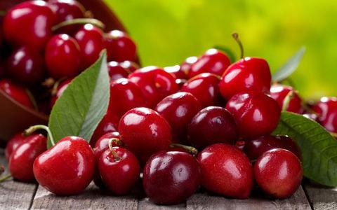 چطور میشود از دور ریز میوهها پول درآورد؟