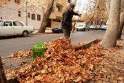 وقتی پاییز اشتغال زایی می کند