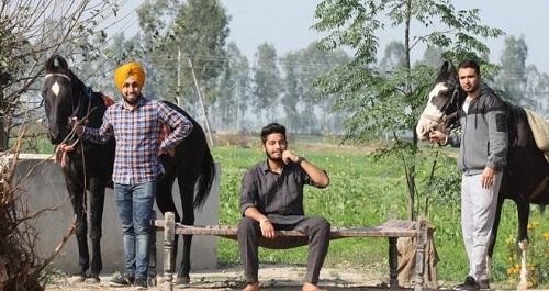 پنج اصل مهم برای موفقیت در کارآفرینی روستایی