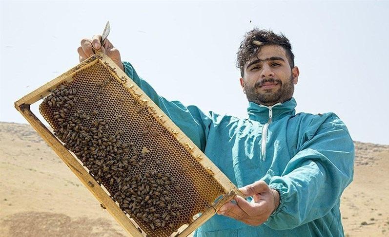 گفتگوی خواندنی با جوان موفق کارآفرین لرستانی/ شغلم را با ۱۰ کندوی زنبور عسل شروع کردم